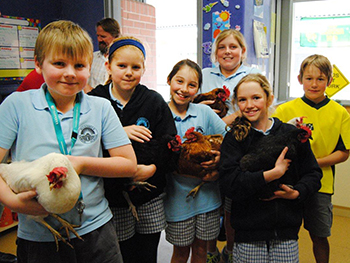 ulladuallachildren_holding_chooks_web